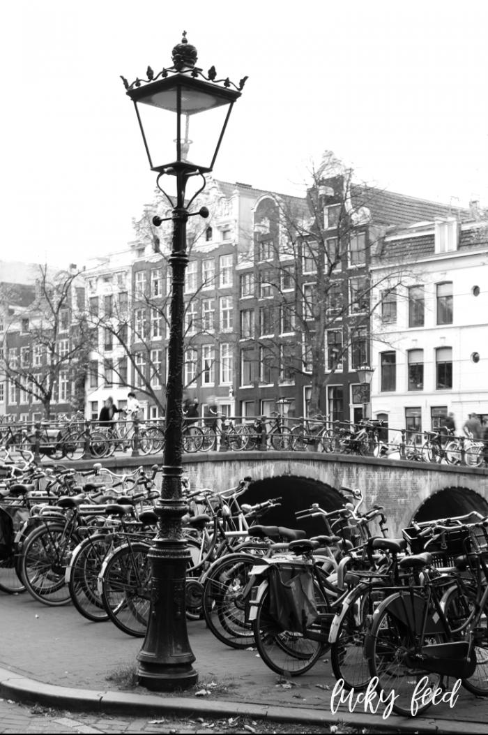 Amsterdam im Herbst, amsterdam, fahrräder amsterdam