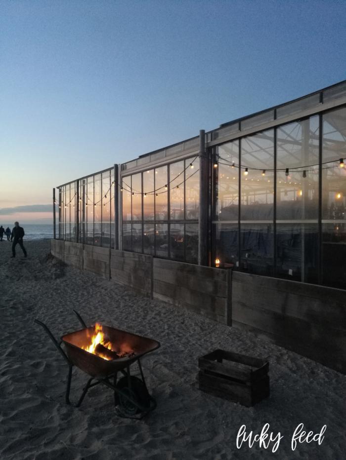 Beachclub Winterlodge, Beachclub Winterlodge Noordwijk, Branding Beachclub, Branding Beachclub Noordwijk