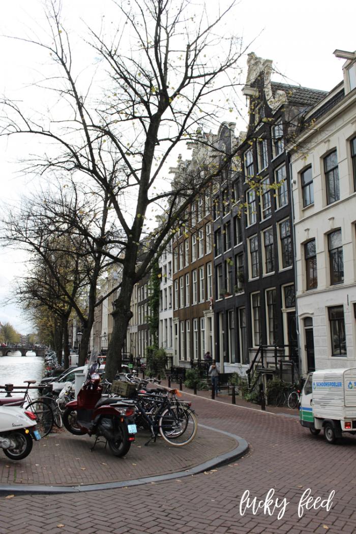 Amsterdam im Herbst, amsterdam, Städtereise, Städtetrip,