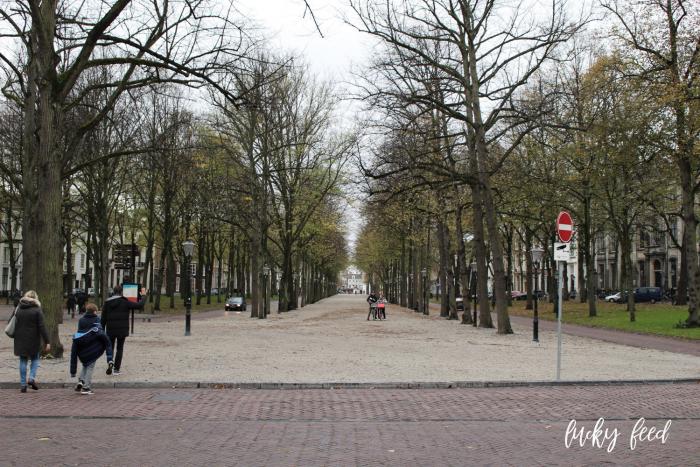 Den Haag, Den Haag im Herbst