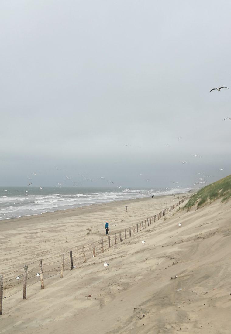 Herbstferien in Noordwijk in Holland mit Ausflügen, Strandwanderungen und Glücksgefühlen im Beachclub Winterlodge