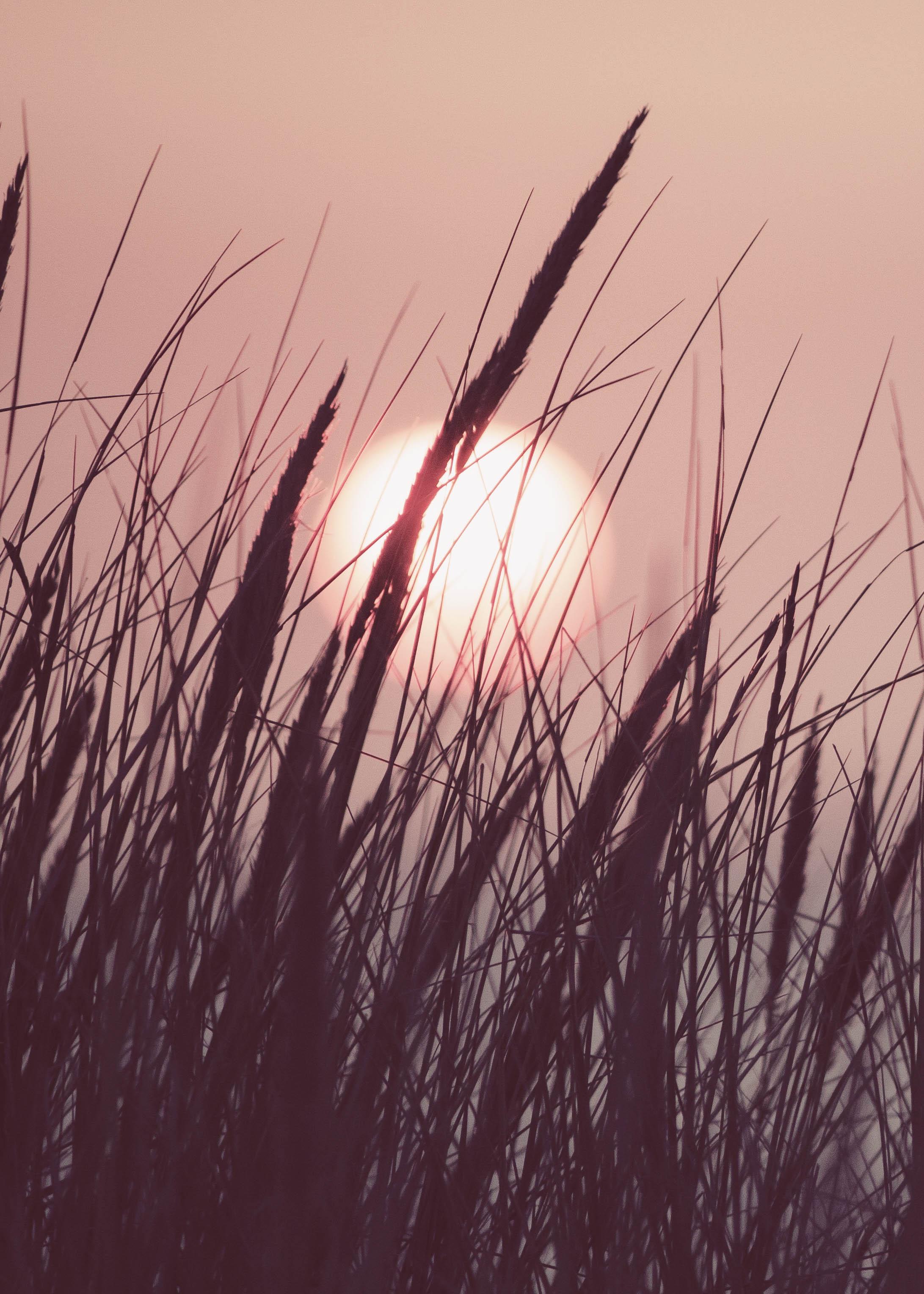 Bodycare: Sommer Sonne Sonnenbrand